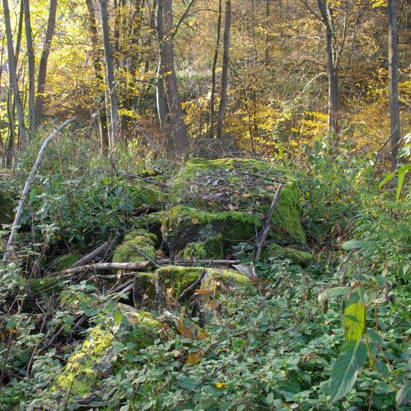 Reste der alten, im Krieg gesprengten, Brücke über die Agger