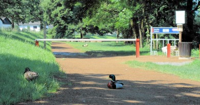 Zugang zur Loopacabana mit Enten