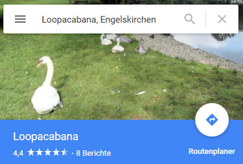 Google Maps Detail